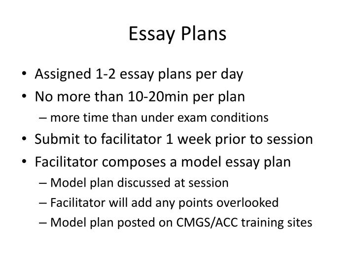 Essay Plans