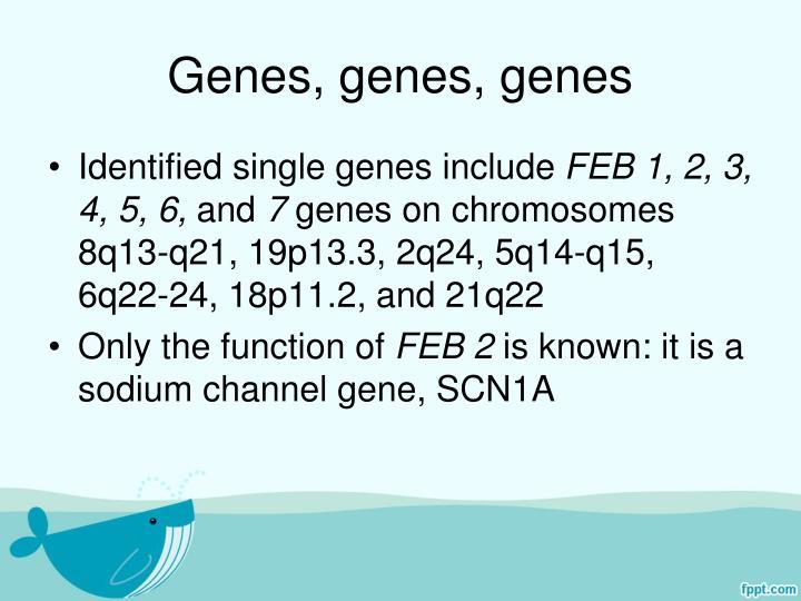 Genes, genes, genes