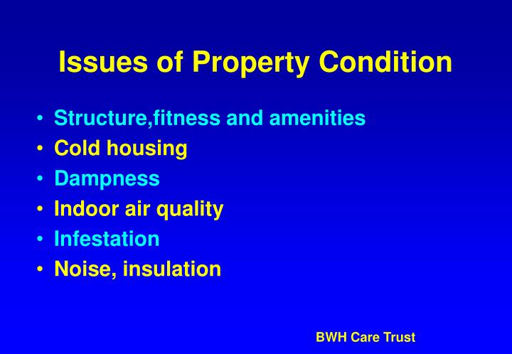 Issues of Property Condition