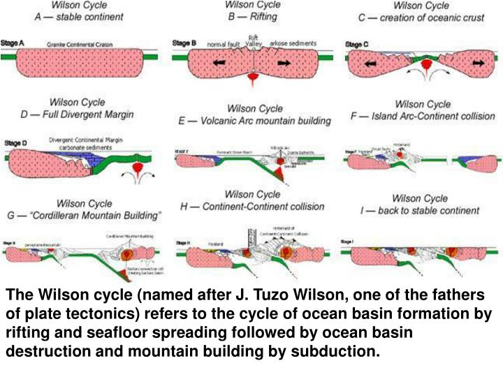 The Wilson cycle (named after J. Tuzo Wilson, one of the fathers of plate tectonics) refers to the cycle of ocean basin formation by rifting and seafloor spreading followed by ocean basin destruction and mountain building by subduction.