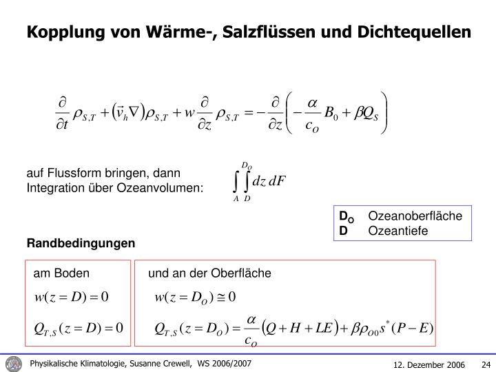 Kopplung von Wärme-, Salzflüssen und Dichtequellen