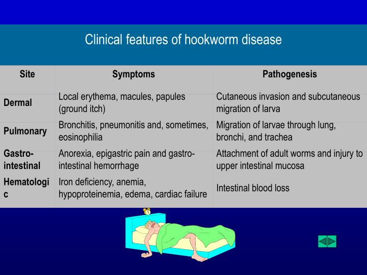 Clinical features of hookworm disease