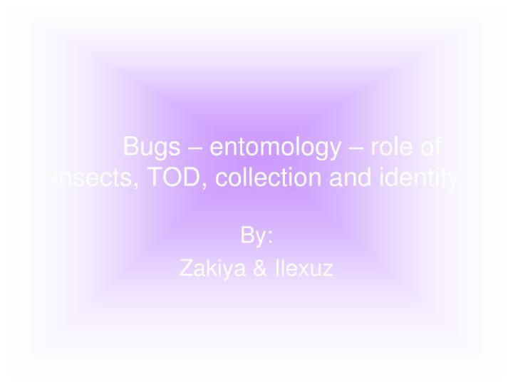 Bugs entomology role of insects tod collection and identity