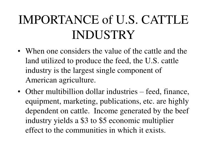 IMPORTANCE of U.S. CATTLE INDUSTRY