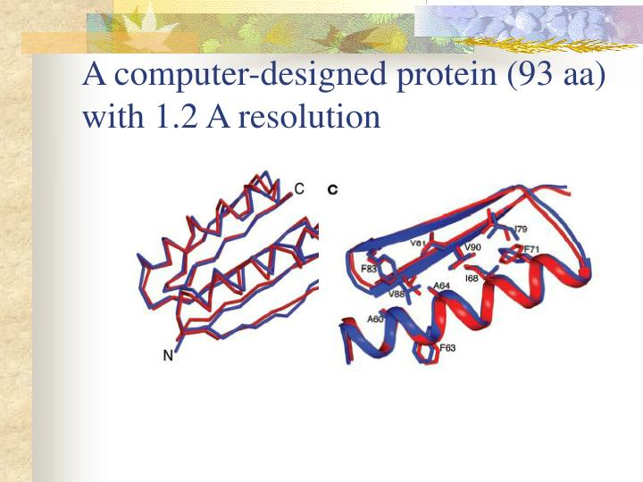 A computer-designed protein (93 aa) with 1.2 A resolution