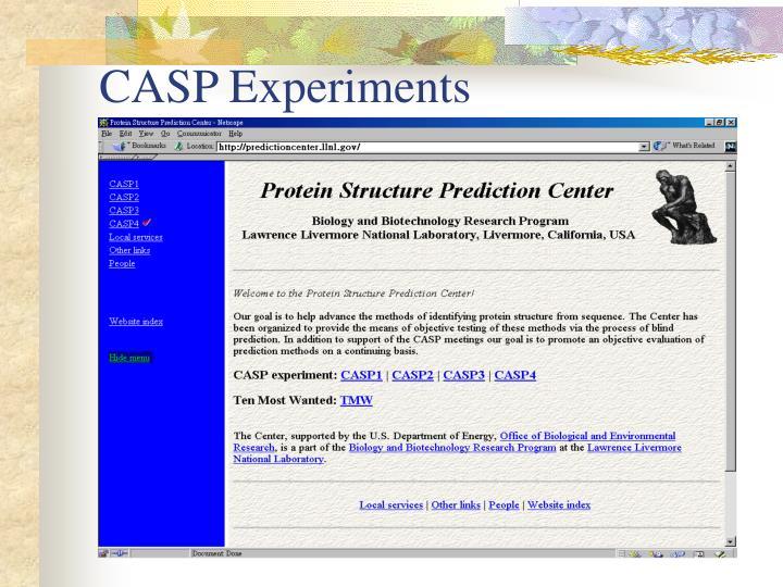 CASP Experiments