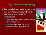 6 collocative meaning