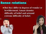 sense relations2