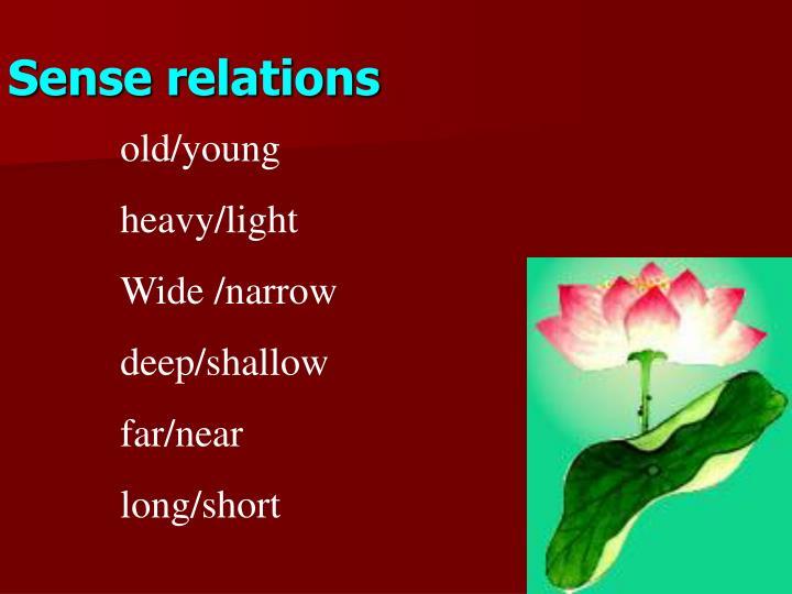 Sense relations