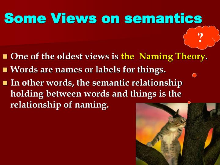 Some Views on semantics