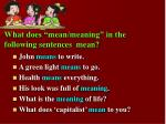 what does mean meaning in the following sentences mean