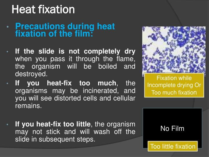 Heat fixation