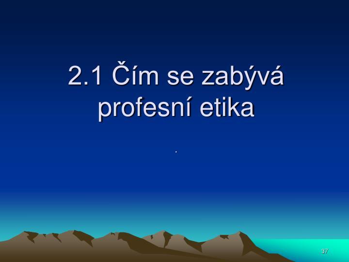 2.1 Čím se zabývá profesní etika