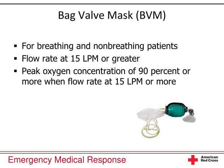 Bag Valve Mask (BVM)