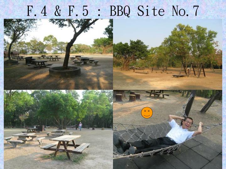 F.4 & F.5 : BBQ Site No.7