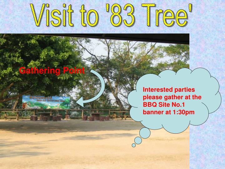 Visit to '83 Tree'