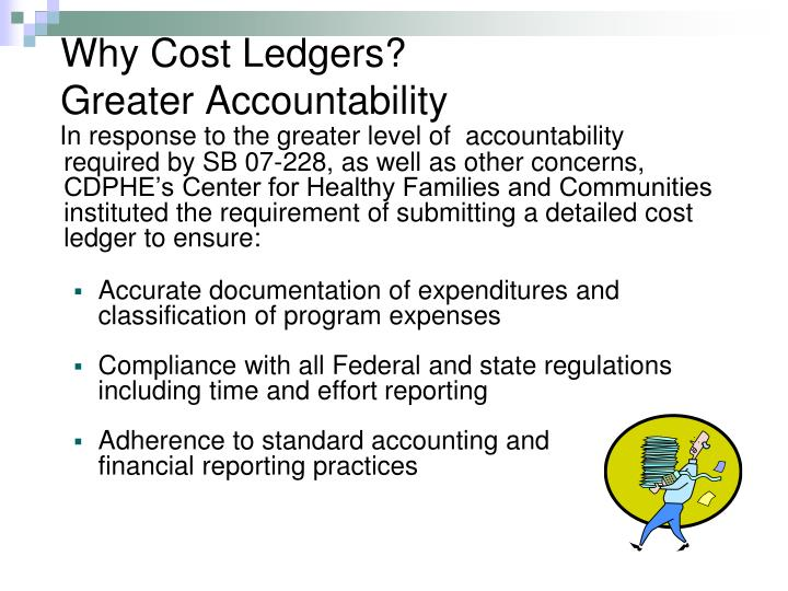 Why Cost Ledgers?