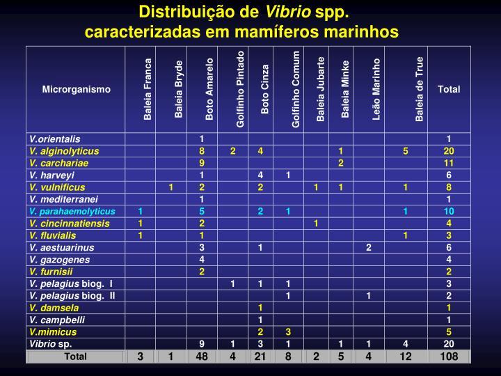 Distribuição de
