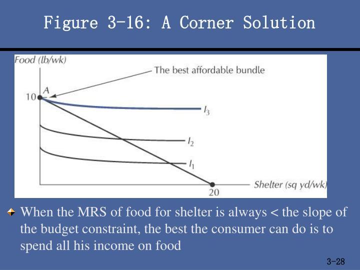 Figure 3-16: A Corner Solution