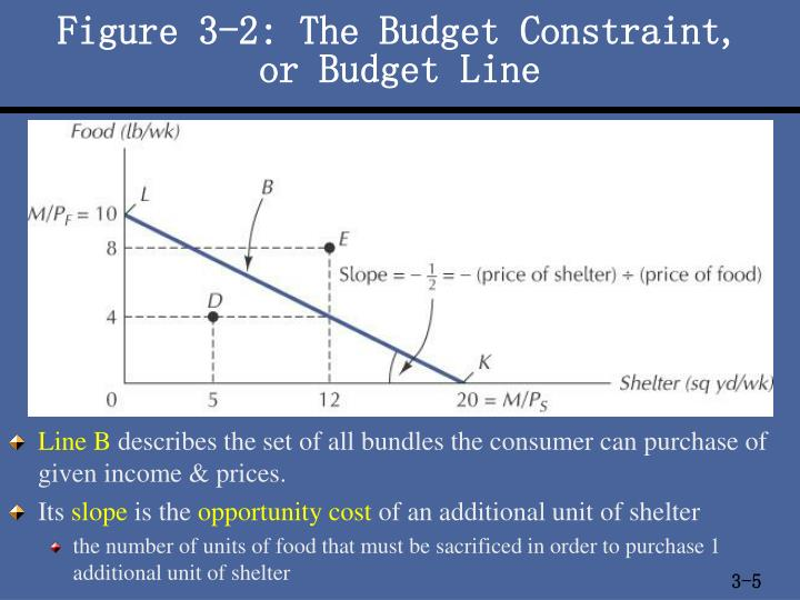 Figure 3-2: The Budget Constraint,