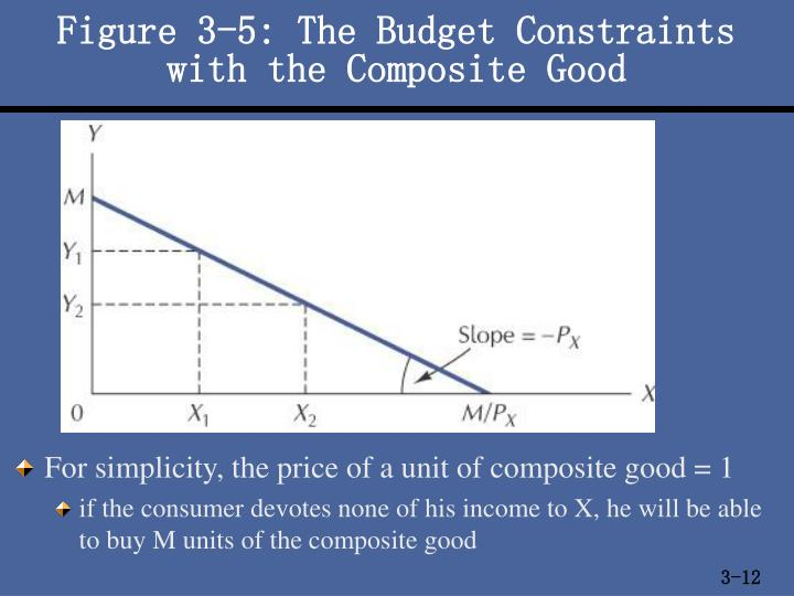 Figure 3-5: The Budget Constraints with the Composite Good