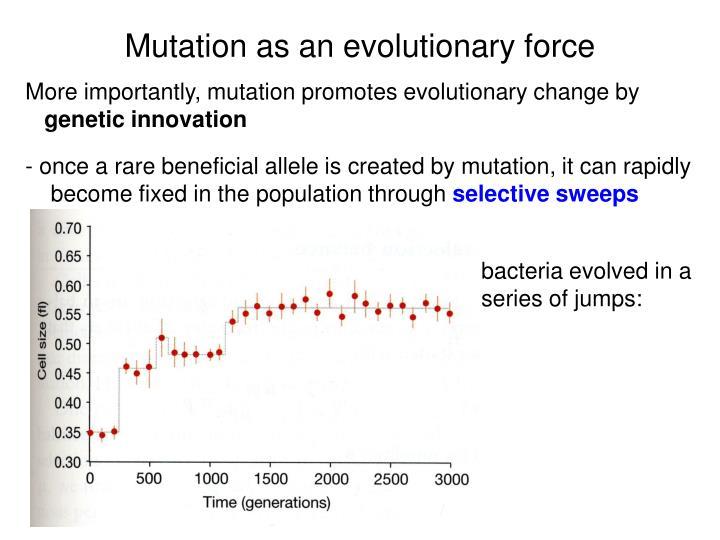 Mutation as an evolutionary force