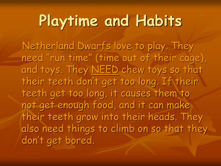 Playtime and Habits