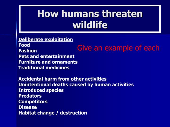 How humans threaten wildlife