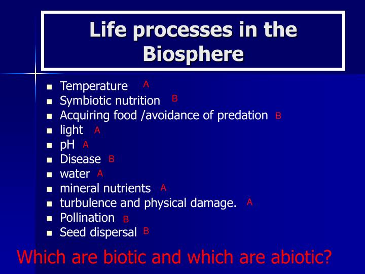 Life processes in the Biosphere