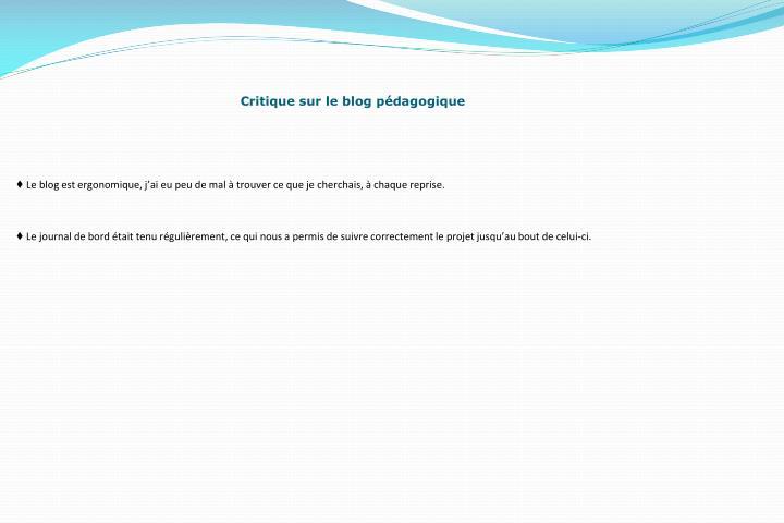 Critique sur le blog pédagogique
