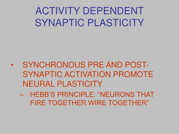 ACTIVITY DEPENDENT SYNAPTIC PLASTICITY