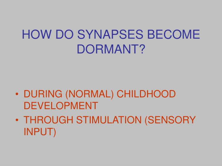 HOW DO SYNAPSES BECOME DORMANT?
