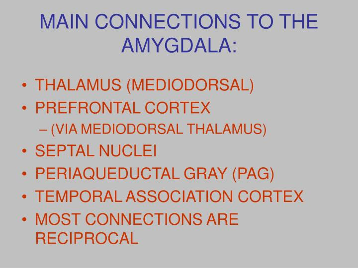 MAIN CONNECTIONS TO THE AMYGDALA: