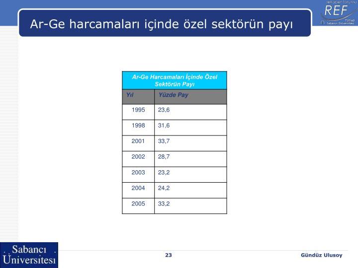 Ar-Ge harcamaları içinde özel sektörün payı