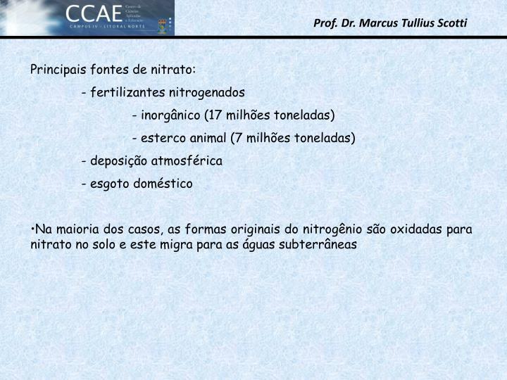 Principais fontes de nitrato: