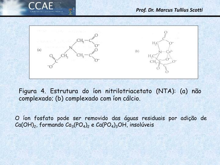 Figura 4. Estrutura do on nitrilotriacetato (NTA): (a) no complexado; (b) complexado com on clcio.