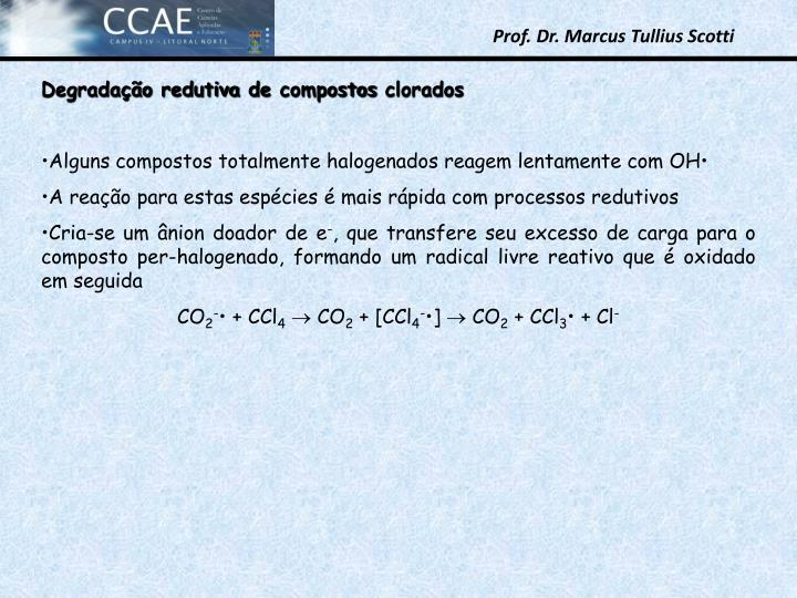 Degradao redutiva de compostos clorados