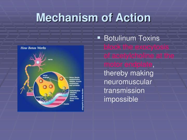 botulinum toxin mechanism of action pdf