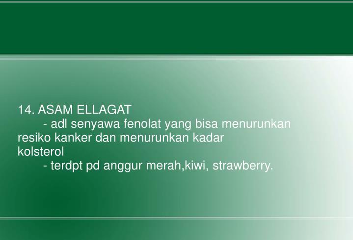 14. ASAM ELLAGAT