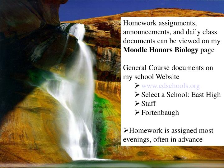 Homework assignments, announcements, and daily class documents can be viewed on my