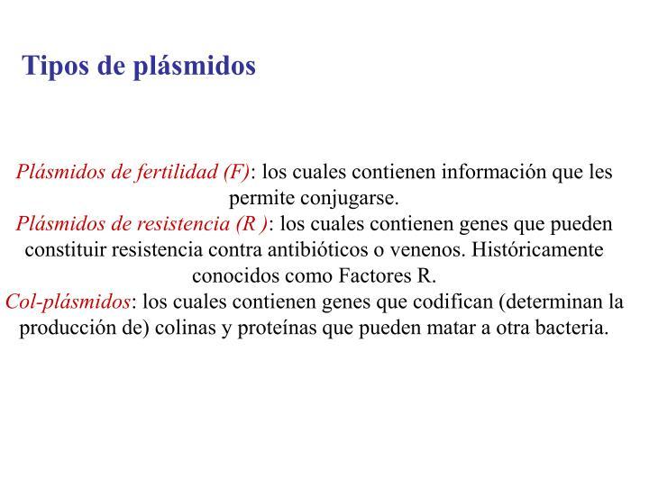 Tipos de plásmidos