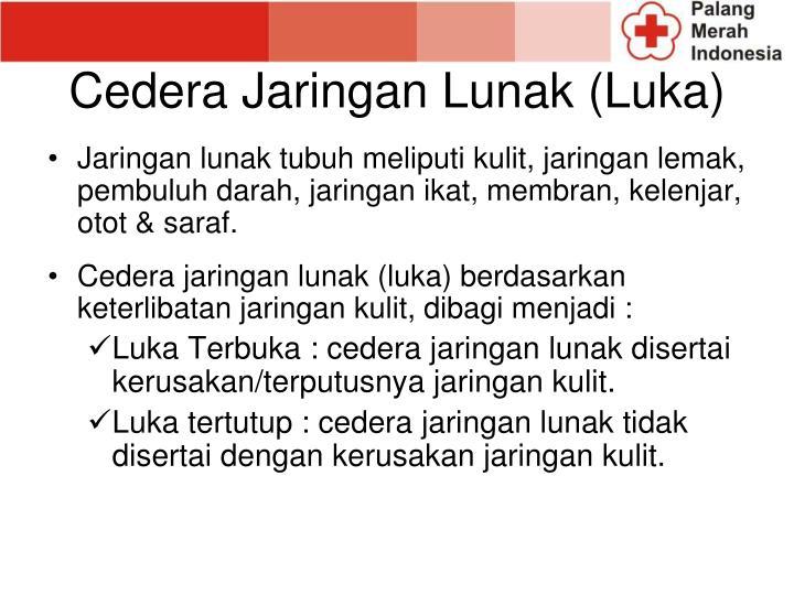 Cedera Jaringan Lunak (Luka)