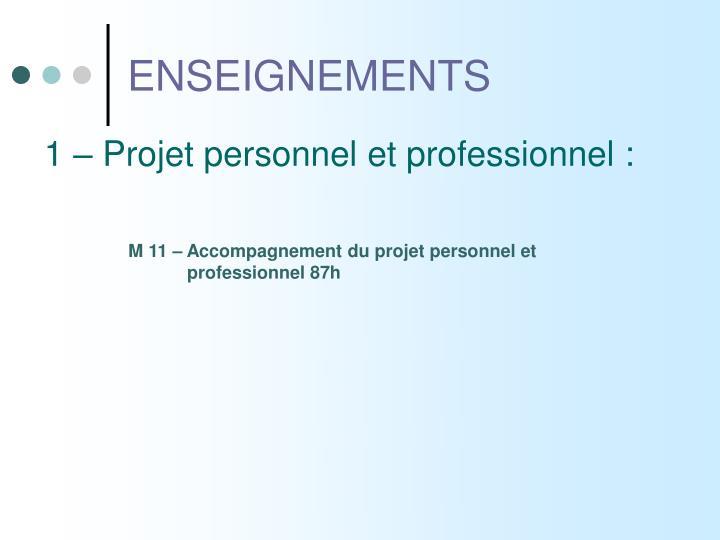1 – Projet personnel et professionnel :