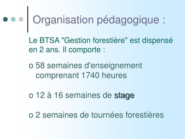 Organisation pédagogique :
