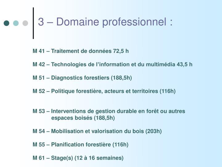 3 – Domaine professionnel :