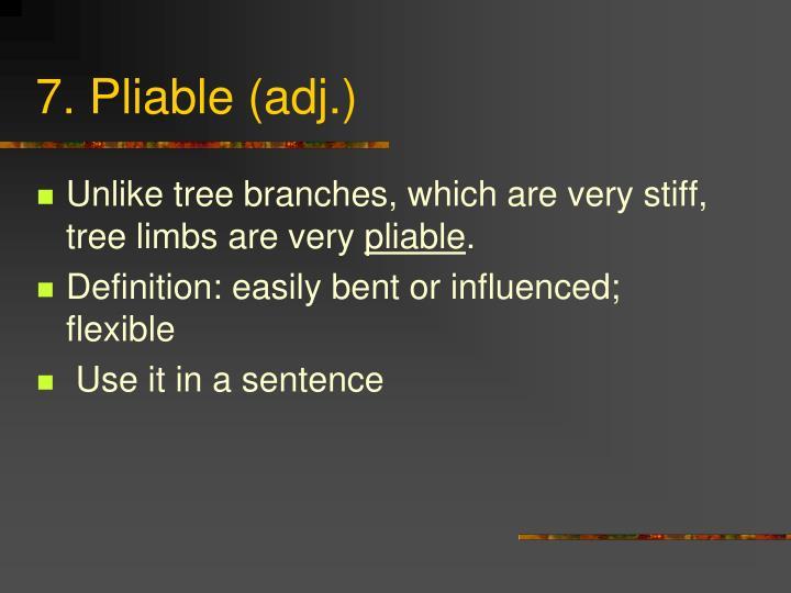 7. Pliable (adj.)