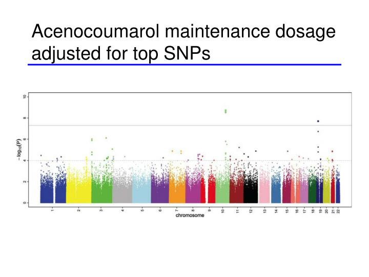 Acenocoumarol maintenance dosage adjusted for top SNPs