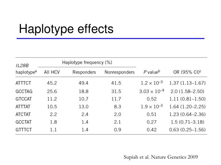 Haplotype effects