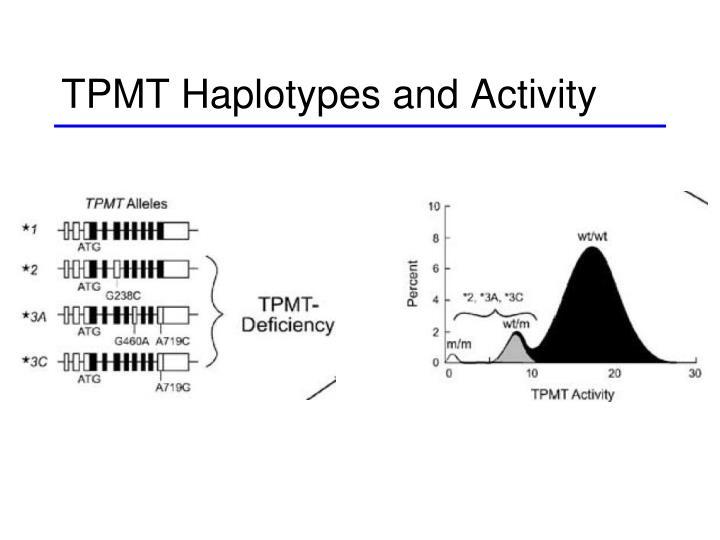 TPMT Haplotypes and Activity