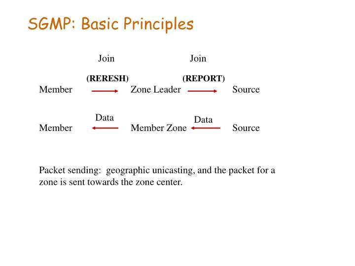 SGMP: Basic Principles